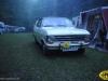 pinse-2010110